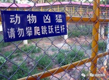 十一出游之动物园篇